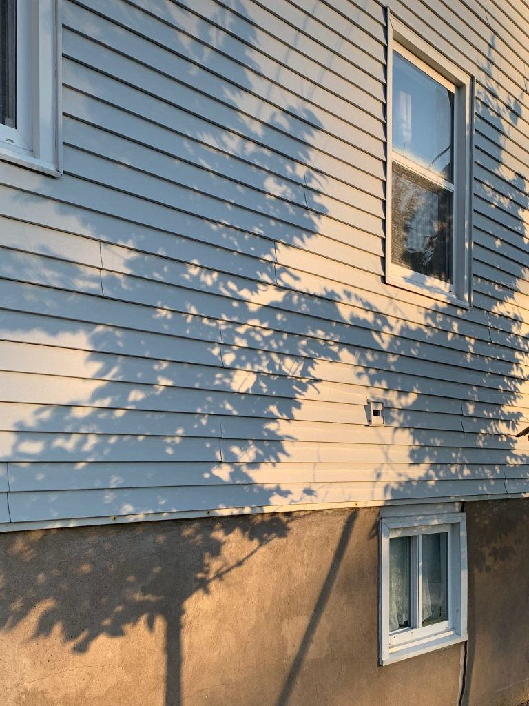 Tree shadows on a painted white, lapped wooden wall of a house with windows