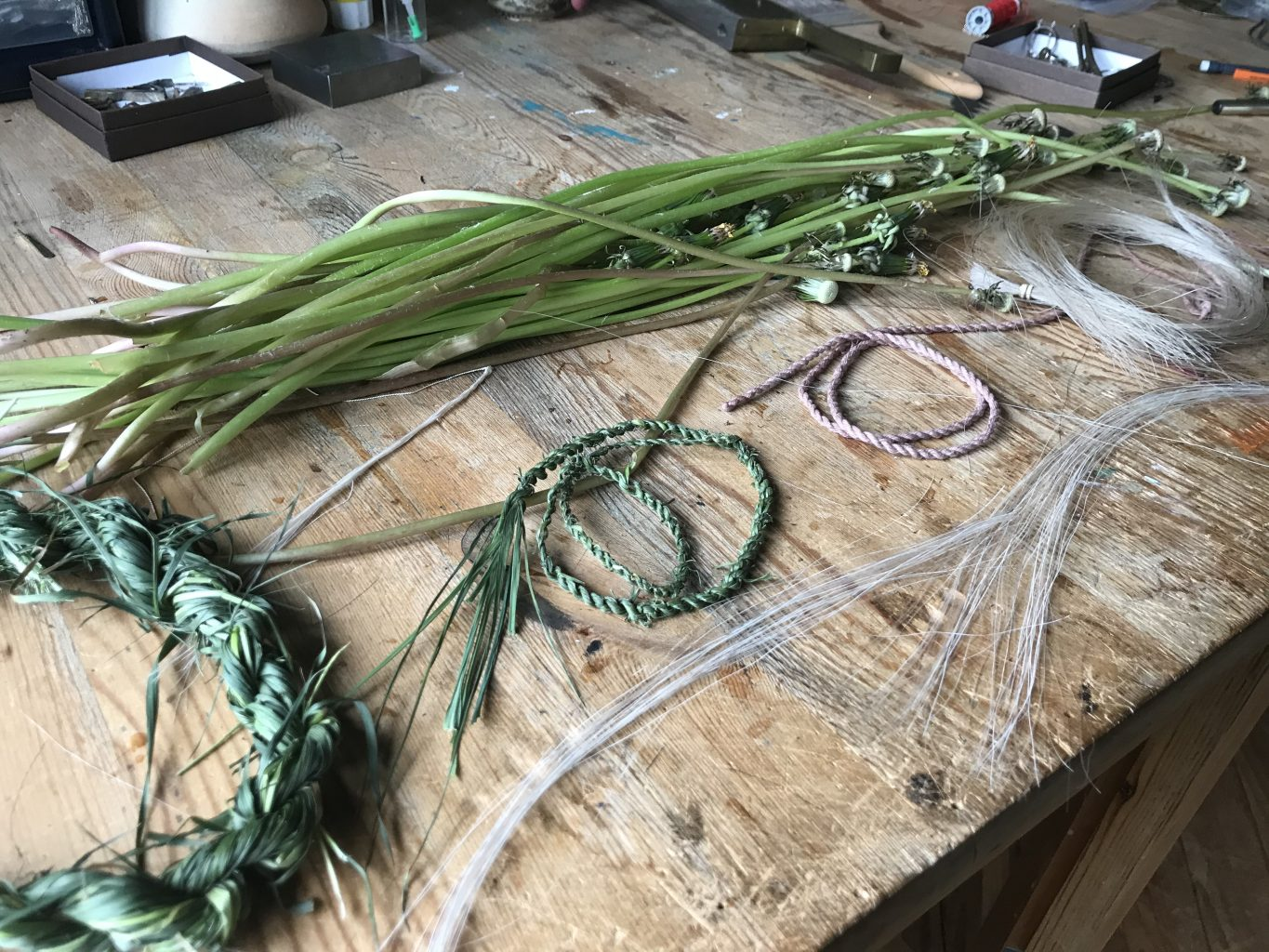 Small piles of picked dandelion stems and horsehair with rope handmade from grass, dandelions, horsehair and lichen on a workbench