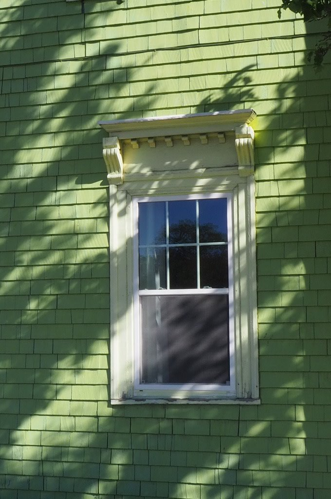 Tree shadow on a painted green, lapped wooden wall of a house with a window